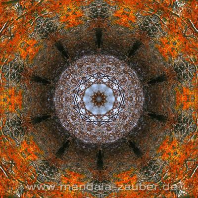 "Mandala ""Transformation"""