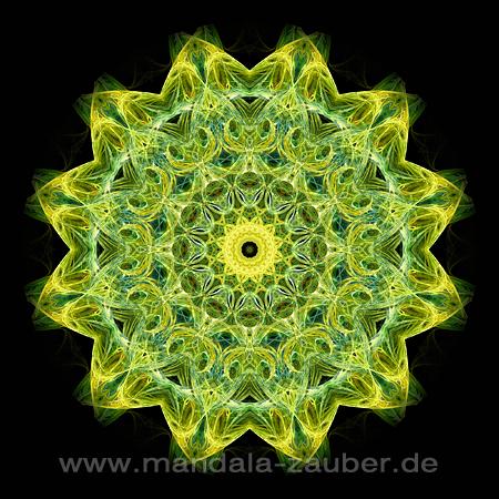 """Mandala """"Natur-Erwachen"""""""