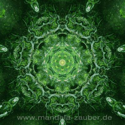 """Mandala """"Naturkraft"""""""