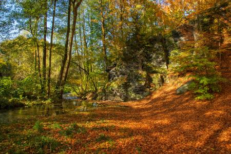 Herbstfarbenzauber